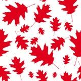 Κόκκινα φύλλα σφενδάμου ως άνευ ραφής σχέδιο Στοκ Φωτογραφία