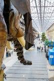 Ο μεγάλος ελέφαντας της Νάντης Στοκ φωτογραφίες με δικαίωμα ελεύθερης χρήσης