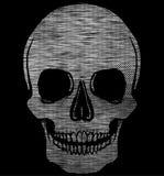 Графический дизайн футболки черепа Стоковое Изображение RF