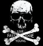 Графический дизайн футболки черепа Стоковые Изображения