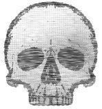 Графический дизайн футболки черепа Стоковое фото RF