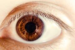 глаз крупного плана Стоковая Фотография