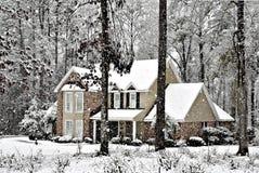 落的雪 免版税库存图片
