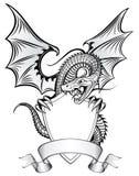 экран дракона Стоковые Фотографии RF