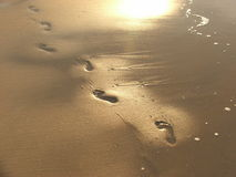 печати ноги Стоковые Фото