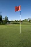 теките гольф Стоковое Изображение RF