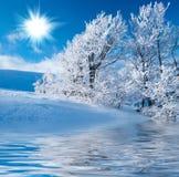 在山的冬天 免版税库存照片