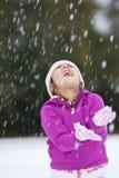 снежок потехи Стоковая Фотография