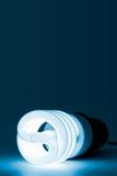 能源电灯泡节省额 库存照片