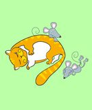 мышь кота Стоковые Изображения RF