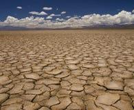 засуха Стоковая Фотография RF