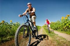 骑自行车放松 库存图片
