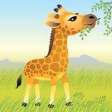 动物婴孩收集长颈鹿 免版税库存图片