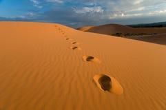 珊瑚沙丘脚印桃红色沙子 免版税库存图片