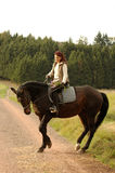开花腾跃马的女骑士 库存图片
