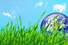 地球地球草绿色 免版税库存照片