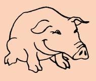 猪 库存例证