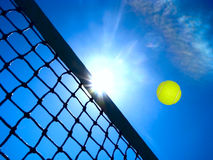 概念网球 库存图片