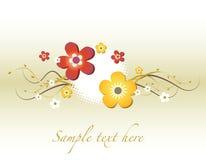 花卉看板卡 免版税库存照片