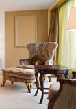 τρύγος καναπέδων Στοκ Εικόνα