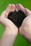 испытание почвы Стоковое Изображение RF