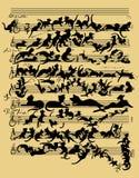 猫滑稽的音乐 免版税库存图片