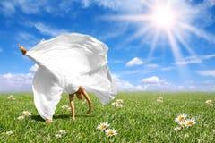 красивейший делать колеса телеги невесты счастливый Стоковая Фотография RF