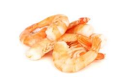 煮沸的虾 免版税库存照片