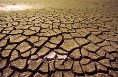 засуха Стоковые Изображения