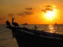加勒比日落 库存照片