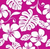 比基尼泳装模式粉红色无缝热带 免版税库存图片