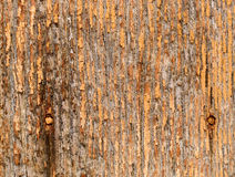 背景脏的老纹理木头 库存图片