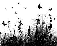 силуэт травы Стоковые Фотографии RF