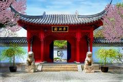 植物的中国庭院 免版税图库摄影