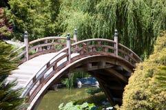 桥梁褐色 免版税库存图片