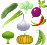 设置蔬菜 图库摄影