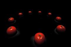 在圈子的蕃茄 免版税库存照片