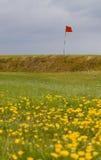 追猎英国高尔夫球场 库存照片