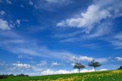 横向春天 免版税库存照片