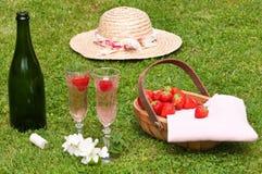 野餐草莓 库存照片