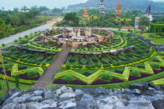 Nong nooch Royalty Free Stock Photography