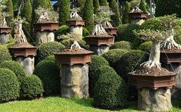 Nong Nooch Tropical Botanical Garden Royalty Free Stock Photography