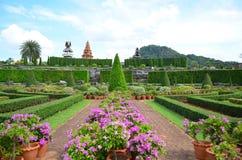 Nong Nooch Tropical Garden. Vegetation at Nong Nooch Tropical Garden,Thailand Royalty Free Stock Image