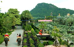 Nong Nooch Tropikalny ogród Obrazy Royalty Free