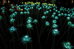 Nong Prajak Public Park Udon Thani, Thailand bokeh LED flowers colorful illuminated plastic optical fibers in dark back.  stock image