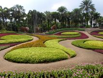 Nong tropiska Nooch och botanisk trädgård Arkivbilder