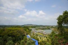 NongNooch den tropiska botaniska trädgården arkivbild