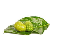 Noni Royalty Free Stock Photography