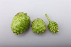 Noni Fruit. Three Noni Fruit on white background Stock Photo