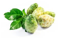 Noni fruit. Royalty Free Stock Photos